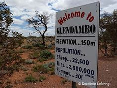 Glendambo 2.000.000 flies