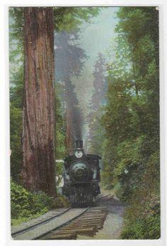 Big Tree Station Union Pacific Railroad Train.