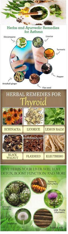Ayurvedic Herbs and Remedies Chart.
