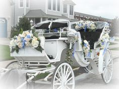 Cape May Wedding Carriages, Cape May Horse and Buggy Rentals for Weddings