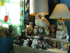 Omg lol this is what my house might look like if my grandma doesn't stop sending me owl things lol