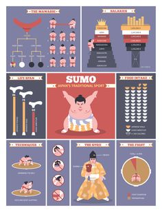 Sumo Facts (Infographics) : Alex Miretsky - Graphic / Interactive Designer