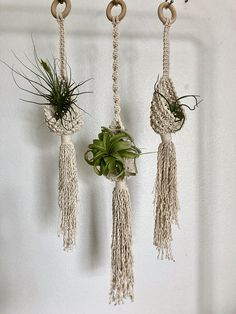 These little cuties can hold up to a 3 inch pot or whatever gorgeous air plant your little heart desires. Definitely best displayed in groups! Made with sturdy cotton cord to help the Pod keep its shape. Indoor/ Outdoor Small stemmed Pod is Macrame Hanging Planter, Macrame Plant Holder, Hanging Plants, Macrame Plant Hanger Patterns, Macrame Patterns, Macrame Knots, Macrame Art, Rope Crafts, Diy And Crafts