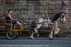 only at APPLEBY HORSE FAIR ~~see you there