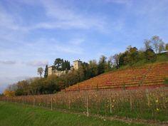 Castello di Trussio a Dolegna del Collio