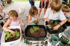 Container Fairy Gardening—a great activity for kids!