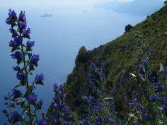 Path of the Gods, Amalfi, Italy