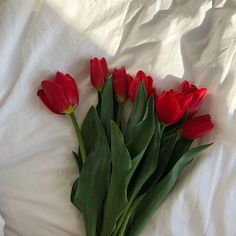 Conceptual Fine Art Photography by Alexandra Diona / Flowers / Body / Wrap / Flower Body Flower Aesthetic, Red Aesthetic, Aesthetic Photo, Aesthetic Pictures, My Flower, Beautiful Flowers, Red Gold, Mother Nature, Planting Flowers