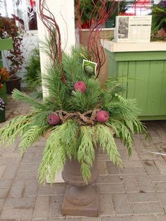 Designing Home: Christmas planters