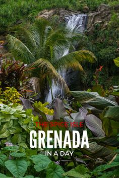 Only have a day to spend in Grenada? Here's how to see the best of the island in eight hours. Grenada Caribbean, Southern Caribbean, Caribbean Vacations, Grenada Island, Windward Islands, Places To Travel, Travel Destinations, Travel Tips, Travel Goals