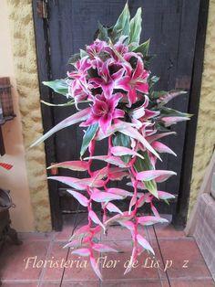 floristeria Flor de Lis perez zeledon
