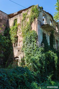 """Download the royalty-free photo """"Old Abandoned Overgrown European Building"""" created by ksene at the lowest price on Fotolia.com. Browse our cheap image bank online to find the perfect stock photo for your marketing projects!"""