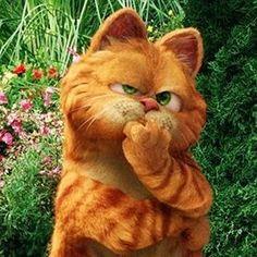 Cute Cartoon Images, Funny Cat Pictures, Cute Cartoon Wallpapers, Cute Pictures, Garfield Wallpaper, Cherry Blossom Pictures, Garfield Christmas, Garfield Cat, Black Art Painting