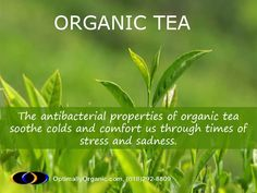 Any time an #organic cup of tea makes you feel fresh and highly energized. #organicsolution #naturalremedie