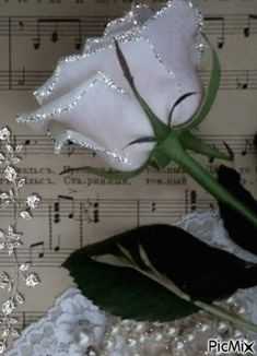 Animated Gif by Victor_Coj Beautiful Love Pictures, Beautiful Gif, Beautiful Roses, Flowers Gif, Pretty Flowers, Foto Gif, Pearl And Lace, Love Rose, Music Notes