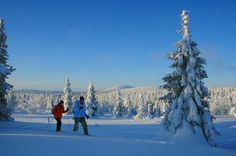 Snowshoe Tour Week in Lapland - in the Land of the Northern Lights - Feel The Nature Day Schedule, Snowshoe, Winter Activities, Parka, Northern Lights, National Parks, Tours, Nature, Outdoor
