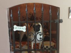 Doghouse under the stairs. My pug, Maria, loves her new room and it looks way better than a crate.