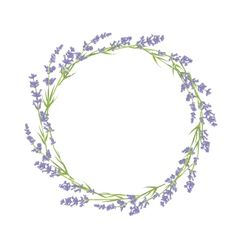 Illustration about Circle of hand drawn lavender flowers . Hand drawn design for Thank you card, Greeting card or Invitation. Illustration of drawn, easter, border - 52521738 Lavender Wreath, Lavender Flowers, Flower Circle, Flower Frame, Flower Vector Art, Flower Clipart, Molduras Vintage, Corona Floral, Harry Potter Tattoos