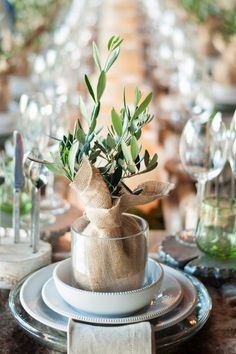 Table Setting, mini Olive Trees at each Place Setting I Tischdeko, gedeckter Tisch, Gastgeschenk