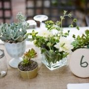 Love the idea of potted plants to reduce the use of cut flowers