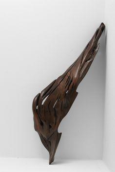 Sculpture · Tropical Driftwood · S1100 H 11 x W 63 x D 21 cm  Piece of stem coat. Polished oil finish.