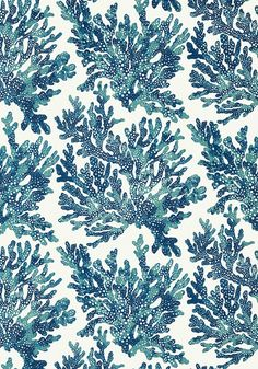 Marine Coral Wallpaper by Thibaut Coastal Wallpaper, Navy Wallpaper, View Wallpaper, Bathroom Wallpaper, Beautiful Wallpaper, Construction Wallpaper, Fantastic Wallpapers, Image Hd, Coral Pattern