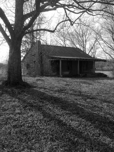 Old home, Lauderdale County, TN.