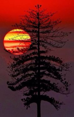 Beautiful sunset in parting splendor .. you melt the sorrows of the day