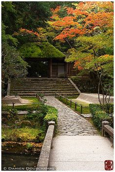 Moss-covered temple gate, Kyoto | The gate roof was replaced… | Flickr