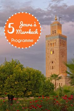 You come for a few days in Marrakech with family or friends, AnnoQri Tours guarantees you high quality transport services at the best price. Destinations, Blog Voyage, Marrakesh, Casablanca, Day Trip, Bons Plans, Beautiful World, Big Ben, London