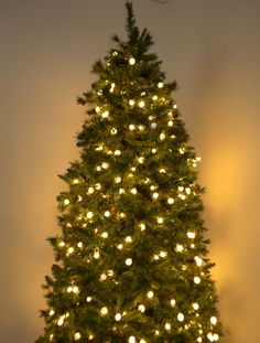 How To String Lights On A Christmas Tree 53 Best Christmas Lights Images On Pinterest  Christmas Lights