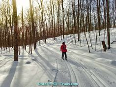 Murphy's Point - Ontario Ski Trails Ontario Parks, Ski Club, Round Lake, Trail Maps, Cross Country Skiing, Campsite, Hiking Trails, Wilderness, Outdoor