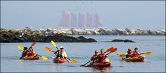 The Maine Coast, by Kayak - New York Times