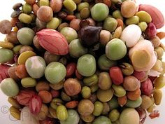 San Francisco Sprout Mix