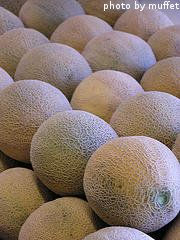 Want to learn about watering and fertilizing cantaloupe plants? It's time to fertilize cantaloupe when. Growing Melons, Backyard Vegetable Gardens, Garden Spaces, Fruit, Gardening, Plants, Factors, Green