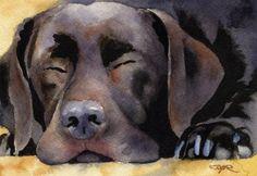Labrador Retriever CHOCOLATE LAB Dog Signed Art Print by Artist DJ Rogers