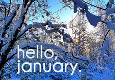 !¡ Cold, comfy, cute, hello january!