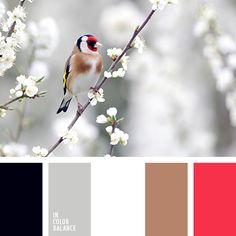 белый, белый и серый, белый и шоколадный, весенние оттенки, коричневый, красно-малиновый, красный и коричневый, красный и черный цвета, малиновый, подбор цвета, светло серый, серый, цвет молочного шоколада, цвета весны, черный, черный и