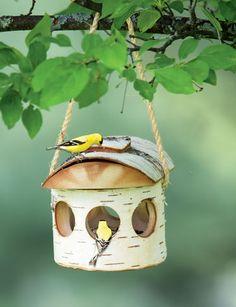 Birch Bird Feeder