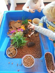 Herfstvakantie met hydrokorrels en herfstmateriaal Sensory Tubs, Sensory Activities, Activities For Kids, Reggio Classroom, Toddler Classroom, Gruffalo's Child, Outdoor Learning, Early Childhood Education, Kids And Parenting