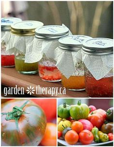 How to save Heirloom Tomato seeds - great project to do with kids!