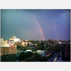 Brooklyn Rainbow 11x20 now featured on Fab.