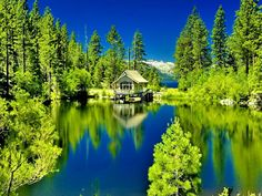 XiNature.com - Tranquil Sky Calm Lake Cabin House Calmness Reflections Cottage Blue Nature Greenery Wooden Hut Mirrored Green Summer Shore Lakeshore Grass Clouds Serenity Picture Landscaping