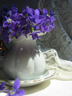 Violets in a white pitcher
