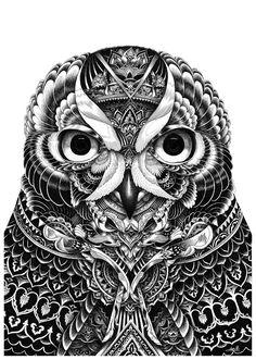 owl portrait 2015.jpg