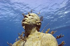 MUSA (Museo Subacuático de Arte) is an underwater museum in the waters surrounding Cancun and Isla Mujeres in Mexico. The project was created by artist Jason deCaires Taylor and consists of 400 permanent life-size sculptures on the ocean floor. Each of the sculptures is made from materials designed to promote coral life, which lends the artwork a fascinating, ever-changing quality, along with attracting marine life.
