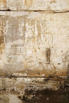 love time worn effects... driftwood, old walls... and the character they radiate... #texture #naturals