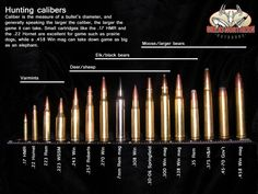 Hunting Calibers