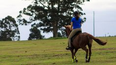 Horse Riding - Lady Riding a Horse by Mark de Scande on 500px
