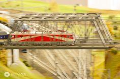 Muzeul Trenului CFR | Viorel OLARIU